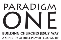 Paradigm One Logo
