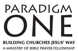 Paradigm One Logo